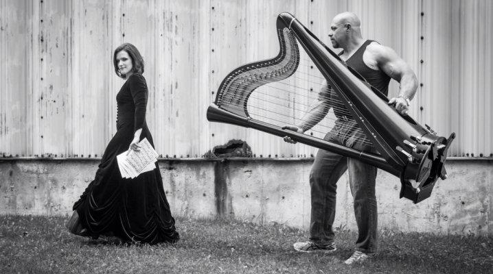 memes-musicaux-la-harpe