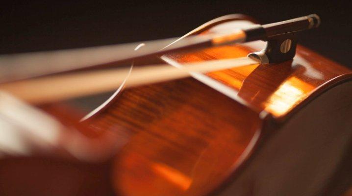 Partitions pour violon et cordes