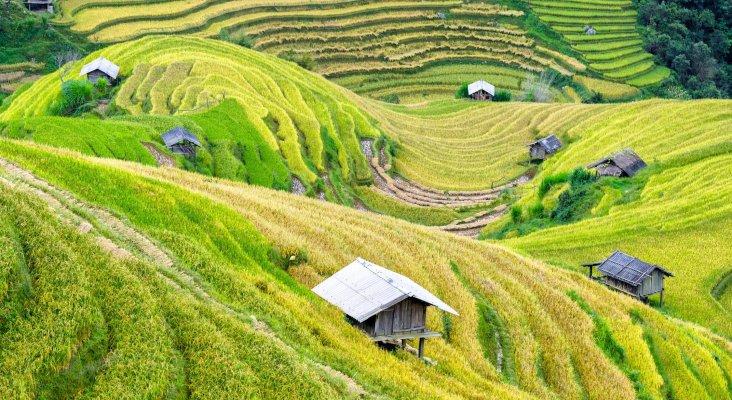 Chansons vietnamiennes partitions gratuites