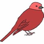 Partitions de chansons sur le thème des oiseaux
