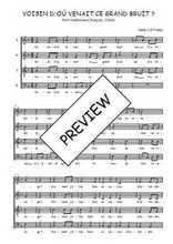 Téléchargez l'arrangement de la partition de Traditionnel-Voisin-d-ou-venait-ce-grand-bruit en PDF à quatre voix